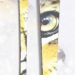 MOdello Tiger